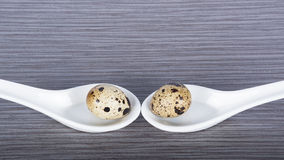 Two porcelain spoons and quail eggs on a gray background Stock Image