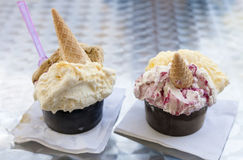 Two portions of ice cream. Stock Images
