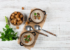 Two portions of mushroom cream soup, above view. Stock Images