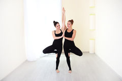 Two positive women, dressed in stylish sportswear practicing yog. Two beautiful women, dressed in stylish sportswear practicing yoga in a bright gym. Healthy Stock Photo