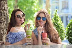 Two positive young women enjoying fresh smoothie. In cafe Royalty Free Stock Photos