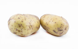 Two potatoes on a white background Royalty Free Stock Image