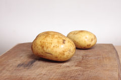 Two potatoes Stock Photography