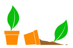 Two potted plant icons, one fallen on its side Royalty Free Stock Image