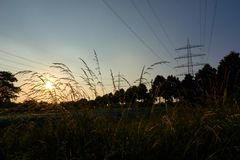 Two power poles and sunrays from a sunset. And a field Royalty Free Stock Image