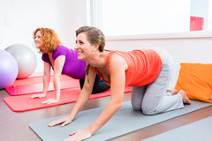 Two pregnant women exercising during prenatal class. Two smiling pregnant women side by side in all-fours position exercising during prenatal class on yoga mat Royalty Free Stock Photos