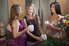 Two Pregnant Women with Friend Stock Images