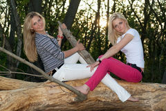 Two pretty blonde sitting on a tree branch Royalty Free Stock Photography