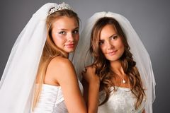 Two pretty brides portrait in studio Royalty Free Stock Photo