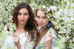 Two pretty caucasian women Royalty Free Stock Photos