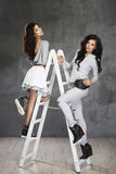 Two Pretty cheerful fashion model. Two Pretty cheerful fashion  model on ladder in studio Stock Image