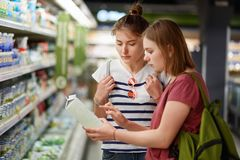 Two pretty female sisters go shopping together, stands in grocer`s shop, select fresh milk in paper container, read label, carry r. Ucksacks, have serious stock images