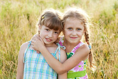 Two pretty funny girl with pigtails Stock Images