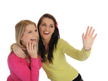 Two pretty girl friends having fun and laughing Royalty Free Stock Image