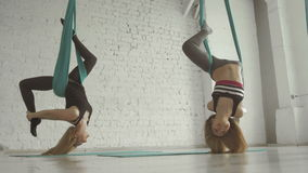 Two Pretty Girls- Aerialist Doing Acrobatic Tricks On Aerial Silks. Healhty lifestyle concept, 4K, UHD stock video