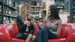 Two pretty girls drinking a red wine and sitting on the sofa. Beautiful blonde and brunette sitting on the sofa in the shop. They holding a glasses with red wine stock video footage