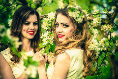 Two pretty girls in the garden under the blossom tree Royalty Free Stock Image