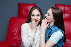 Two pretty girls gossiping on red leather couch Royalty Free Stock Image
