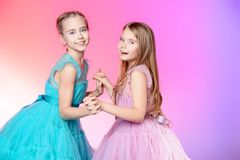 Two pretty girls royalty free stock image