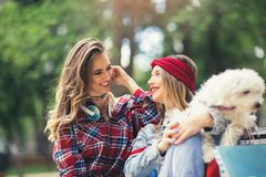 Pretty girls playing with cute puppy in the park Royalty Free Stock Photos
