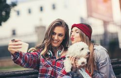 Two pretty girls playing with cute puppy in the park Stock Photos