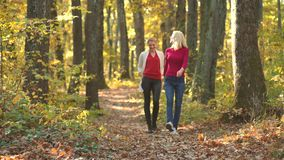 Two pretty girls walking in the Autumn Park. Smiling girls over autumn natural background. Playing in the autumn park. stock footage