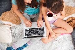 Two pretty happy sisters drinking tea and using laptop together Stock Photos