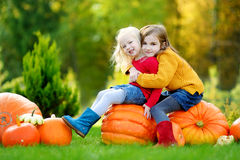 Two pretty little sisters having fun together on a pumpkin patch Royalty Free Stock Photography