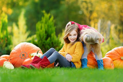 Two pretty little sisters having fun together on a pumpkin patch Stock Photo