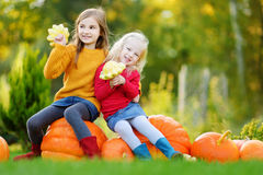 Two pretty little sisters having fun together on a pumpkin patch Royalty Free Stock Photos