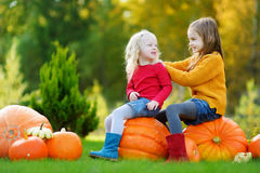 Two pretty little sisters having fun together on a pumpkin patch Stock Photos
