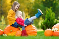 Two pretty little sisters having fun together on a pumpkin patch Royalty Free Stock Images