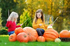 Two pretty little sisters pretending to be playing drums while having fun on a pumpkin patch Royalty Free Stock Image