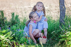 Two pretty sisters 3 and 7 years old picking strawberries at the farm. Siblings hug each other Stock Images