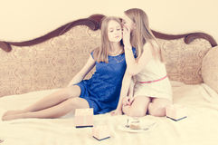 Two pretty teenage girls with long hair wispering Stock Images