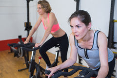 Two pretty women doing exercises on bicycles at gym Stock Image