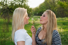 Two pretty young blonde Stock Photos