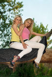 Two pretty young blonde sitting on a tree Royalty Free Stock Photos