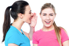 Two pretty young girls gossiping Royalty Free Stock Image