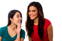 Two pretty young girls gossiping Royalty Free Stock Photo