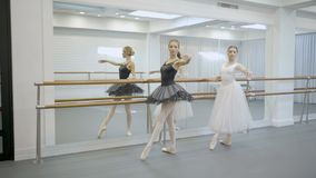 The two prima ballerina do passe during the ballet repetition in big bright studio. The woman in black tutu and the lady in white dress stand near the mirror stock video