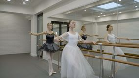 The two prima ballerinas are exercising while standing near the barre in big ballet class with mirror. The dancers are doing inclines and passe par terre stock video