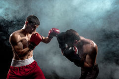 Two professional boxer boxing on black smoky background, Royalty Free Stock Image