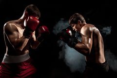 Two professional boxer boxing on black smoky background,. Two professional boxer boxing on black smoky studio background Stock Photography