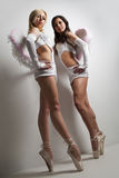 Two professional female ballet dancers Royalty Free Stock Image