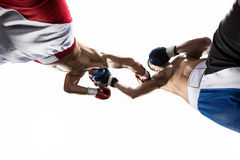 Two professionl boxers are fighting on the white Royalty Free Stock Photography