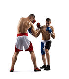Two professionl boxers are fighting on the white. Two isolated professionl boxers are fighting on the white background Stock Photo
