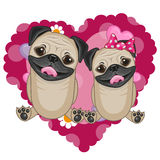 Two Pug Dogs. On a background of heart Royalty Free Stock Images