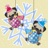Two Pug Dogs in hat Royalty Free Stock Photography