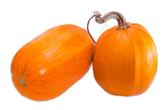 Two pumpkin on a light background Royalty Free Stock Image